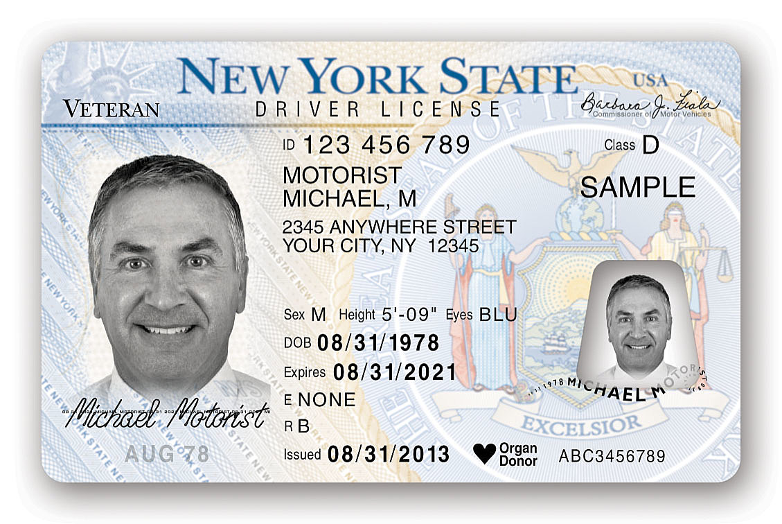 driver licenses for undocumented aliens In colorado, oregon, and california, the granting of driver's licenses to illegal aliens has generated controversy and raised national security concerns that.